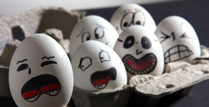 egg (4)