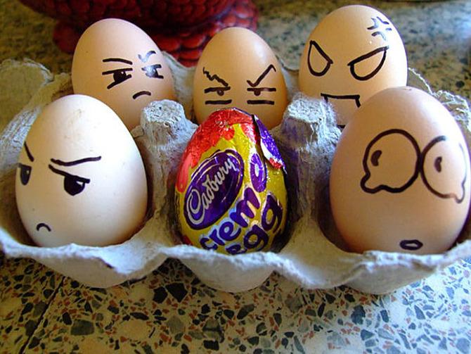 egg (6)