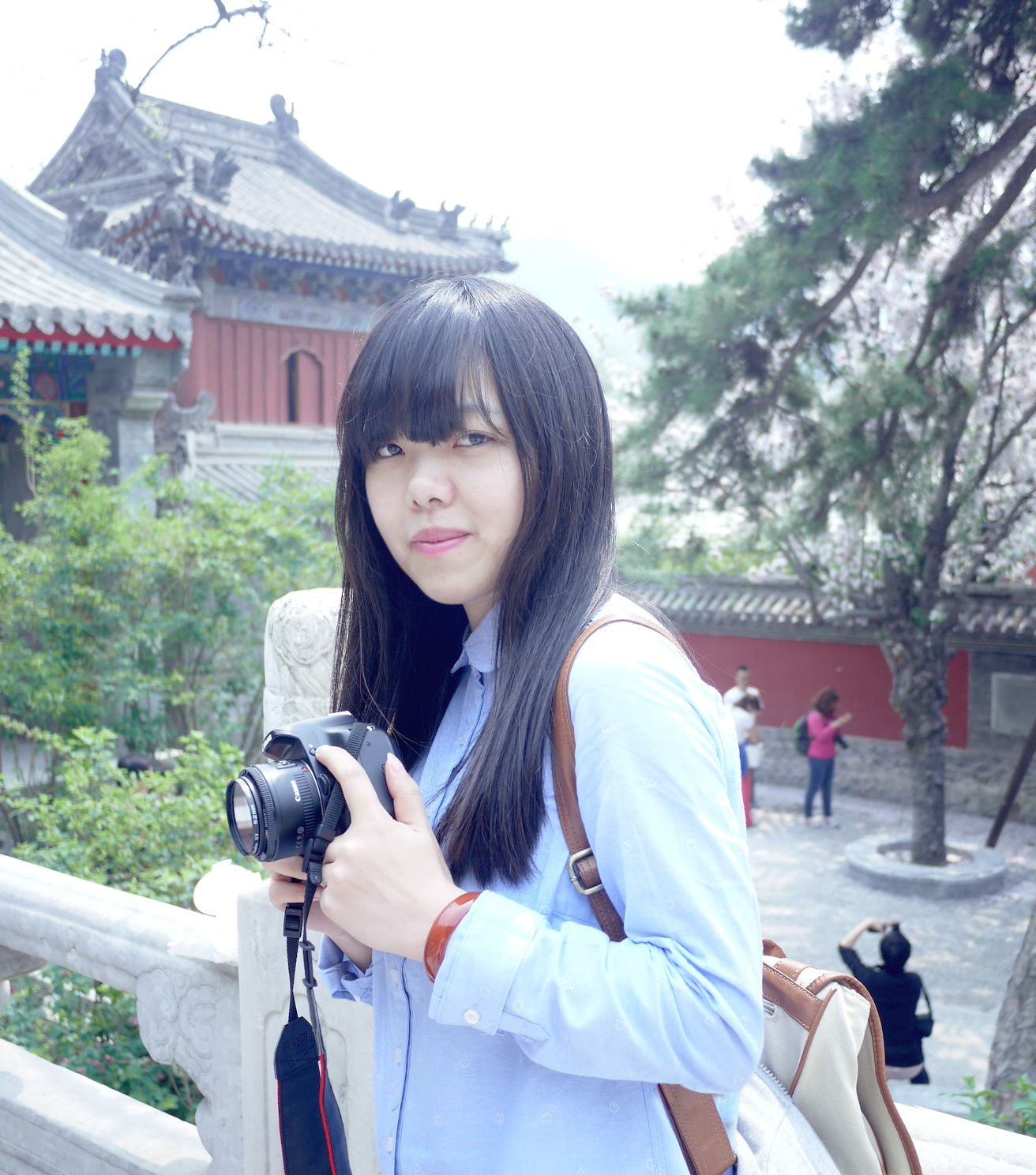 我的照片P1020913