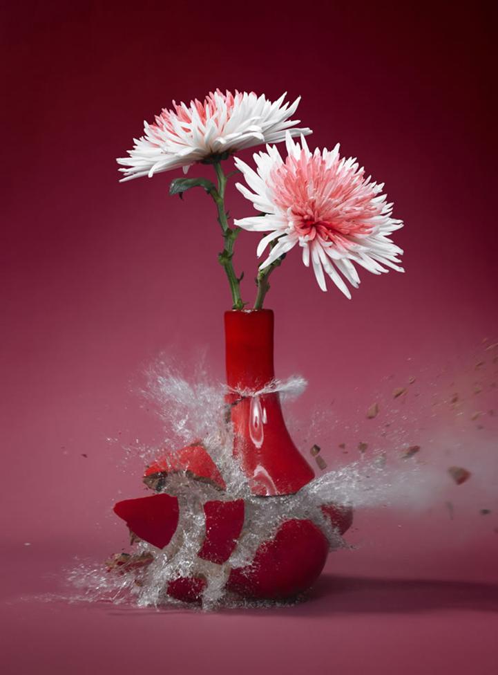 亦动亦静的破碎之美 | 花瓣博客