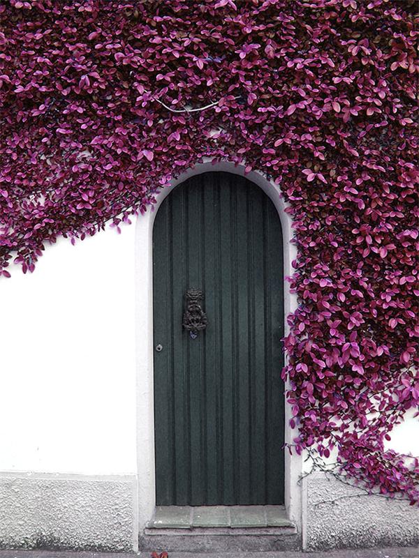doors (14)