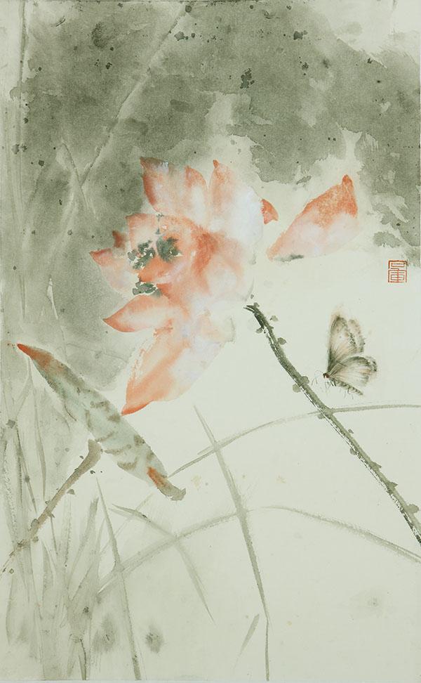 和花蝴蝶副本