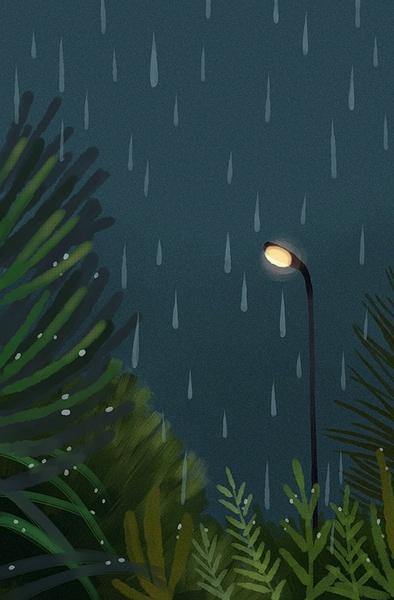 走在雨季中