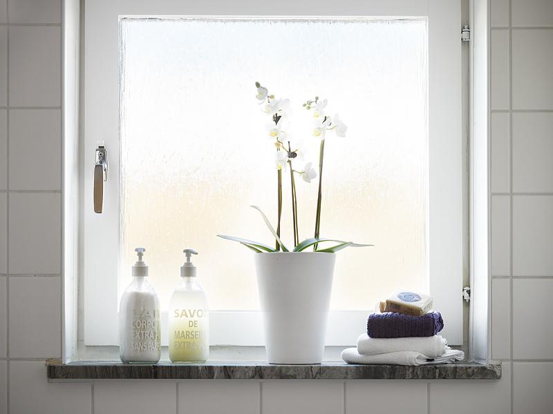 花瓣家居:单身公寓,品味一个人的精彩
