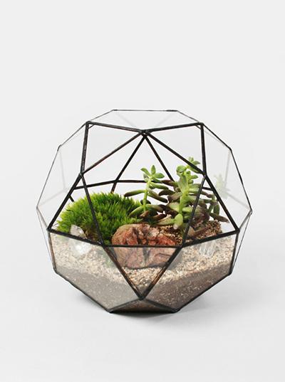 创意花盆,点缀生活的不规则设计