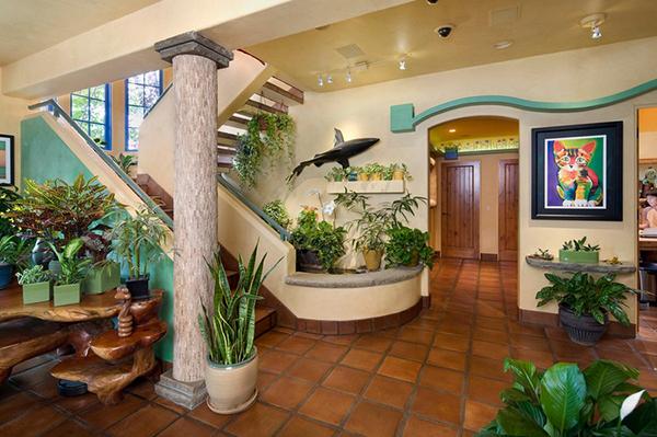 3万5千美金,把家改造成喵星人的「游乐场」