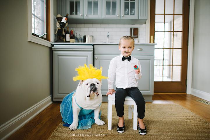 宝宝与斗牛犬的创意成长照