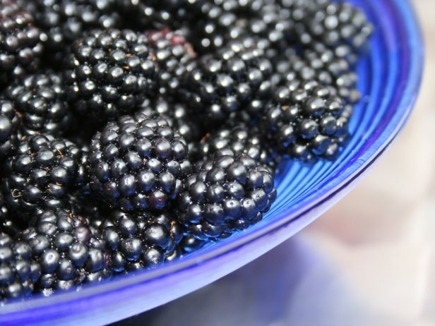 FN_Summer-Food-Blackberries_s4x3.jpg.rend.snigalleryslide